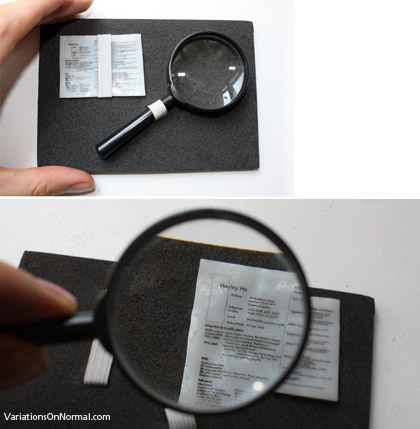 The world's smallest job application